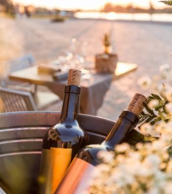 venissa: the wine of venice