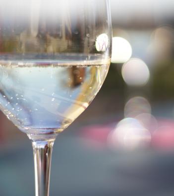 borgoluce: vino ed ecosostenibilità