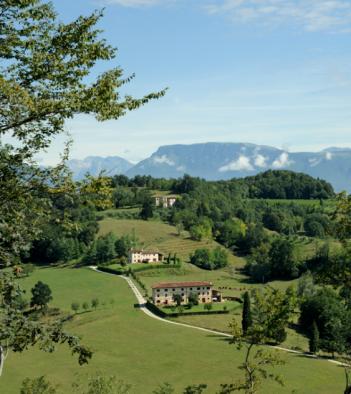 Borgoluce - Degustazione vini Treviso