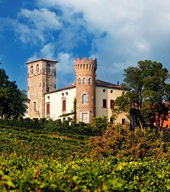 castello di buttrio: i vini del friuli