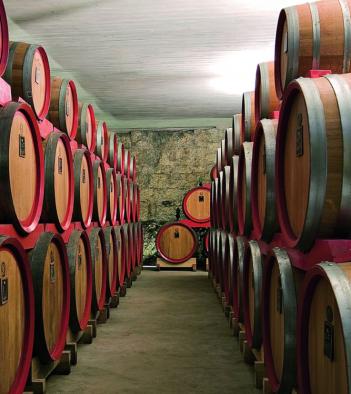 Castelvecchio - Degustazione olio
